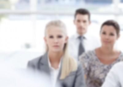 Strategic Partner Planning