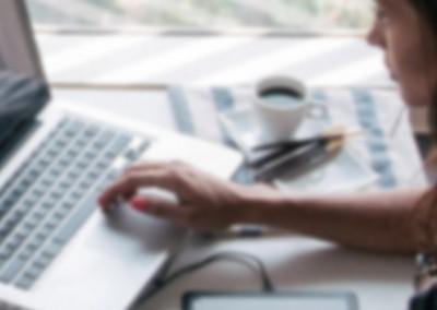 Website Development Program Management